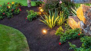 Manejo de jardines
